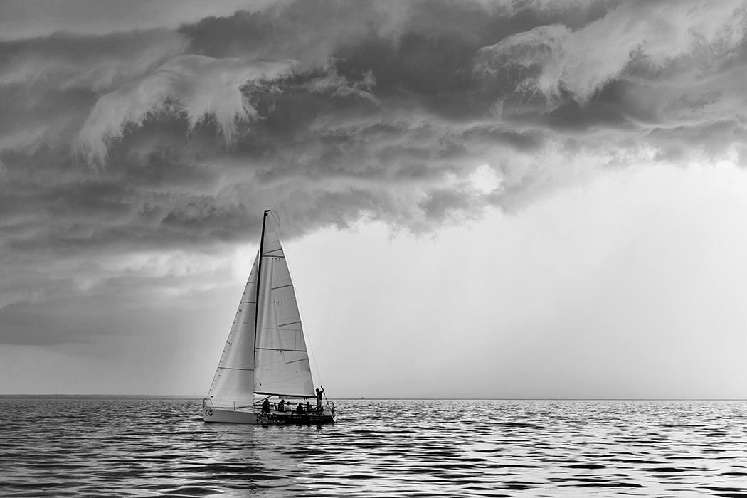 Фотокартина Sail Regatta 4