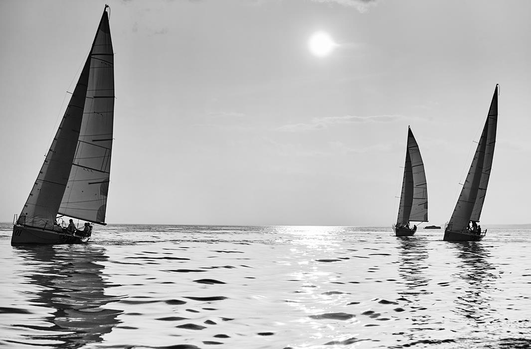 Фотокартина Sail Regatta 9