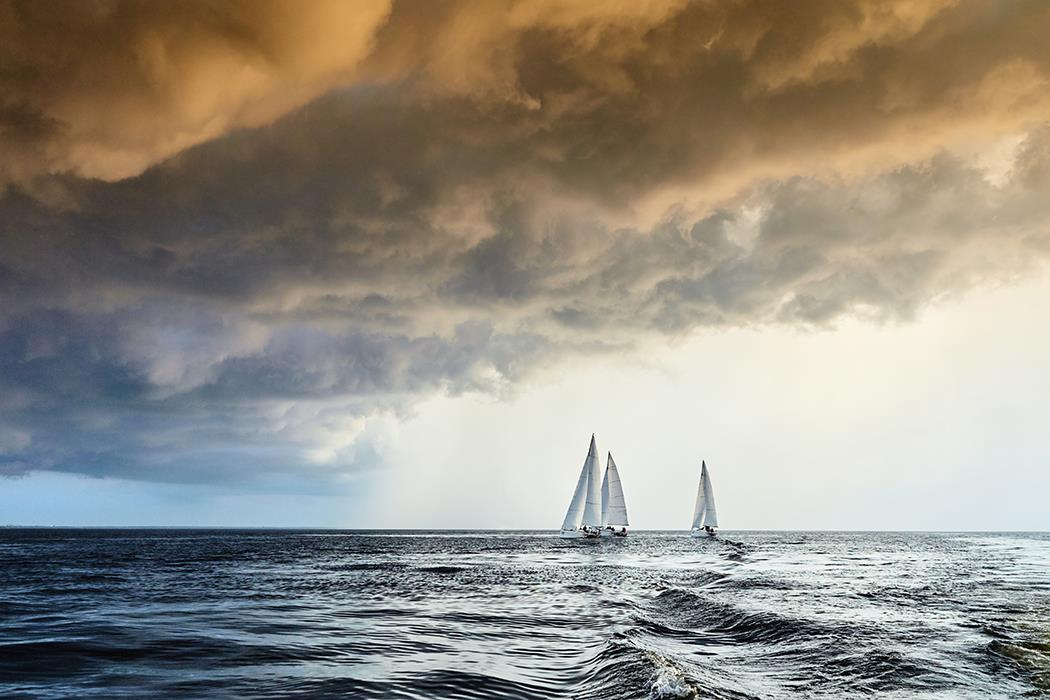 Фотокартина Sail Regatta 11